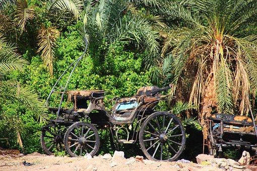 Nile River, Coach, Palm Trees, Mood, Egypt, Romantic