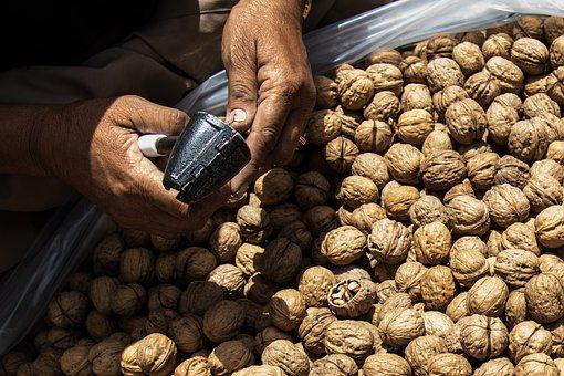 Nut, Walnut, Cracking, Nuts, Cracking Nuts, Brown