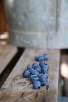 Blueberries, Obstkiste, Garden, Berries