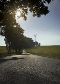 Road, Field, Beginning Of Summer, Windmill, Trees