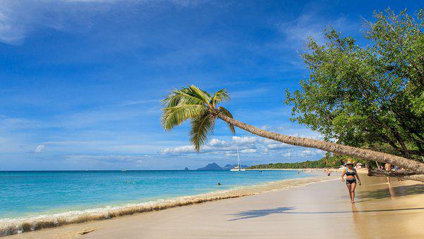 Martinique, Caribbean, Island, Beach, Sea, Holiday