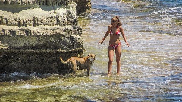 Summertime, Girl, Dog, Summer, Nature, Sea, Vacations