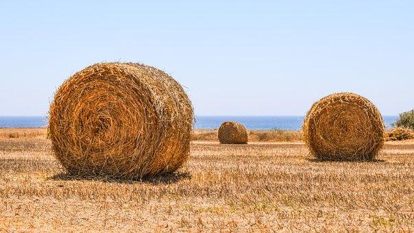 Hay Bales, Field, Agriculture, Rural, Farming, Farm