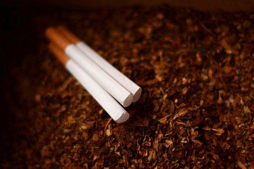 Cigarette, Smoking, Smoke, Tobacco, Cancer, Lifestyle