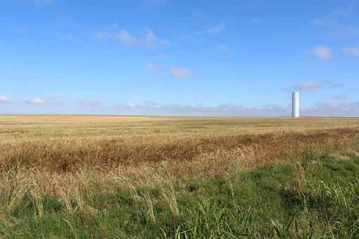 Wheat, Water Tower, Blue Sky, Farmland, Grass, Oklahoma