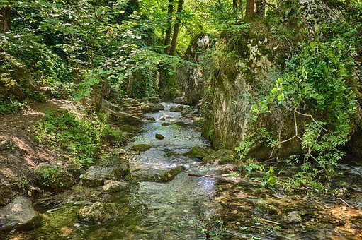Bach, Idyllic, Rock, Splash, Leaves, Forest