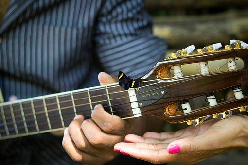 Butterfly, Guitar, Casal, Nature, Music, Romantic, Love