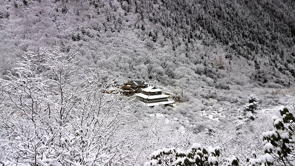 The Mountains, Monastery, Snow, Forest, Winter