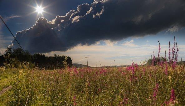 Landscape, Nature, Meadow, Clouds, Back Light