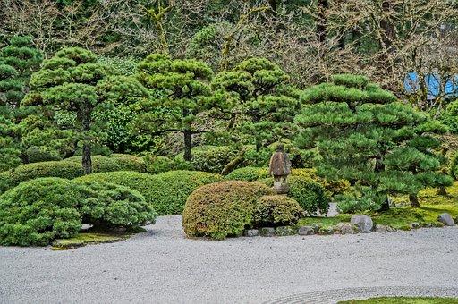 Japanese, Garden, Fall, Meditation, Asian, Park, Stones