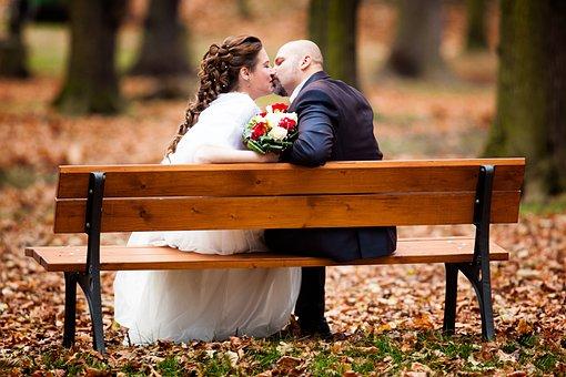 Wedding, Autumn, Leaves, Bench, Park, Nature, Flower