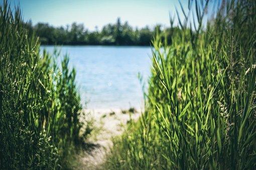 Nature, Lake, Water, Landscape, Summer, Travel, Natural