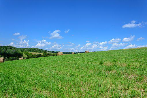 Grass, Fields, Bales, Agriculture, Landscape, Straw