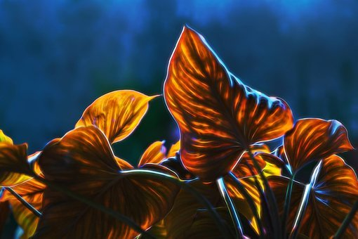 Autumn Leaves, Visual Composer, True North