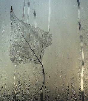 Sheet, Glass, Drops, Stripes, Streaks, Fog