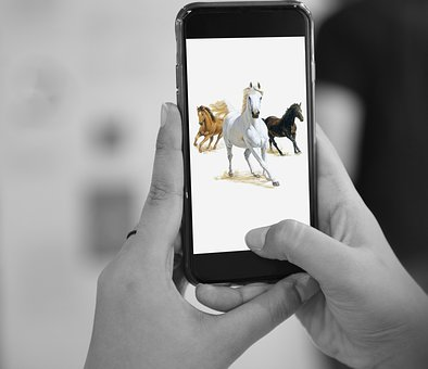 Horses, Device, Mobile, Phone, Smartphone