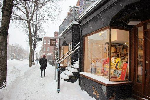 Snow, Winter, Store, Vitrine, Cold, White, Season