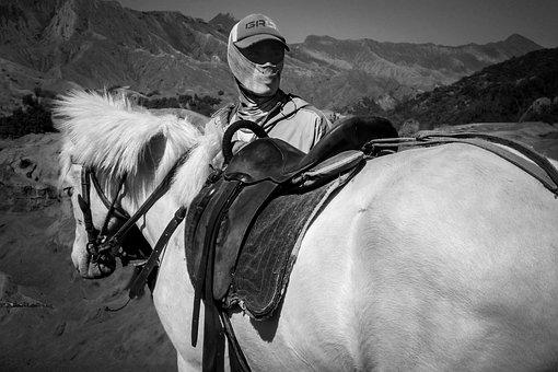 Man, Horse, Job, Black And White, Mounted Guide, Black