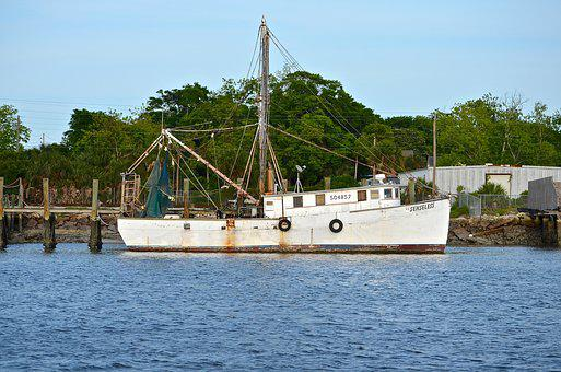 Boat, Water, Outdoors, Transportation, Marine, Ship