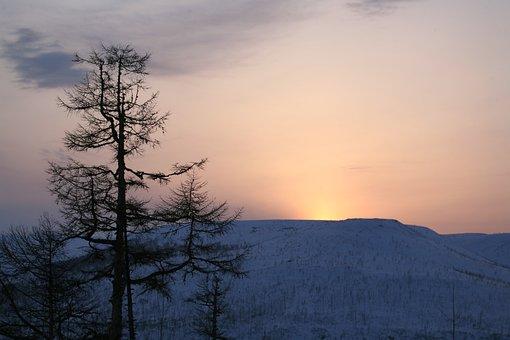 Sunset, Mountains, Larch, Winter, Evening, Landscape