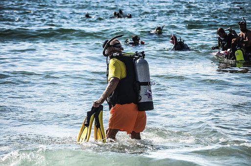 Diver, Diving, Ocean, Summer, Activity, Sport