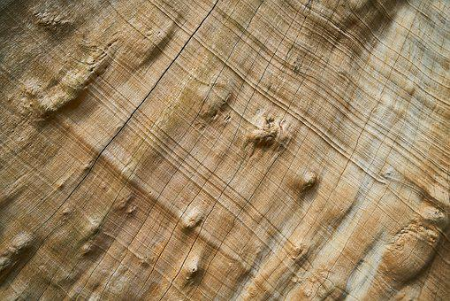 Wood, Tree, Nature, Wood-fibre Boards, Pattern, Texture