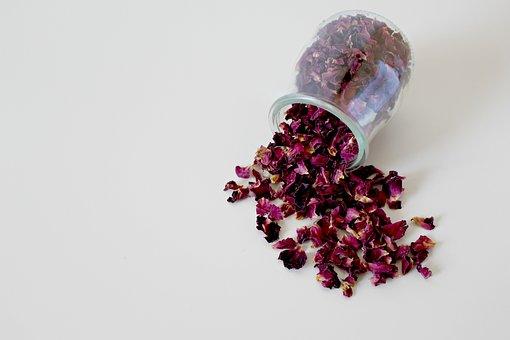 Flower, Trockenblume, Roses, Nature, Dry, Pink, Blossom