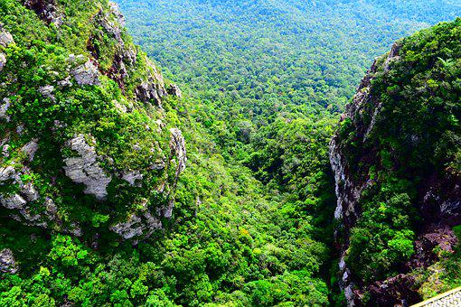 Mountain, Green, Nature, Landscape, Forest, Sky, Summer