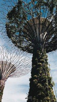 Wallpaper, Iphone Wallpaper, Singapore, Nature, Asia