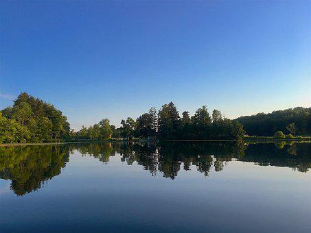 Lake, Reflection, Summer, Trees, Shoreline, Landscape