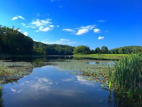 Lake, Summer, Sunshine, Water, Nature, Landscape, Sky