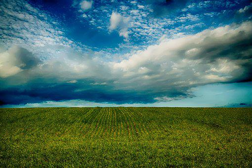 Field, Sky, Countryside, Nature, Landscape, Grass