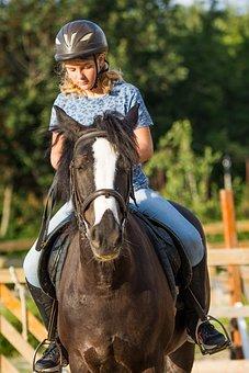 Horse Riding, Horses, Farm, Riding, Stallion, Ranch