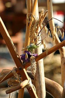Thanksgiving, Cereals, Autumn, Autumn Decoration