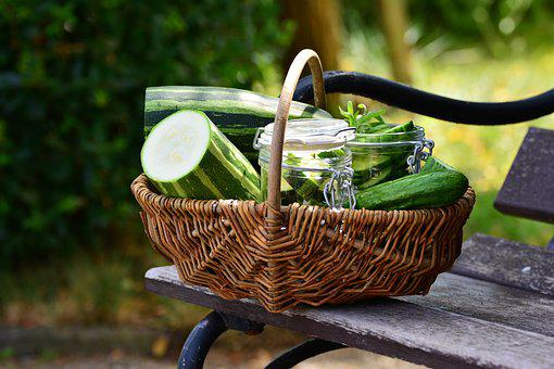 Zucchini, Vegetables, Cucumbers, Harvest, Garden