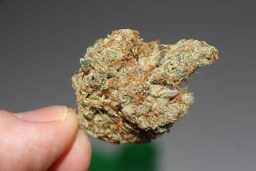Weed, Cannabis, Marijuana, Stoner, Pot, 420, Ganja
