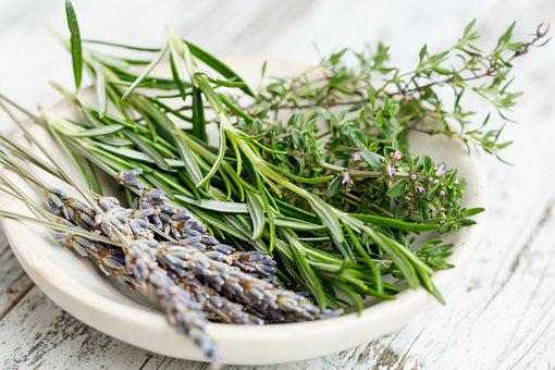 Herbs, French, Bouquet, Gourmet, Cuisine, Rosemary