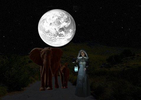Good Evening, Elephant, Woman, Fantasy