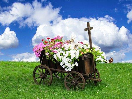 Nature, Landscape, Meadow, Grass, Cart, Flowers