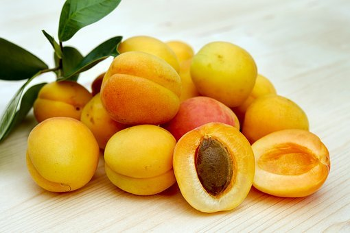 Apricots, Sugar Apricots, Fruit, Fruits, Sweet, Frisch