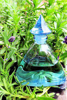 Plant, Lavender, Lavender Flowers, Lavender Oil