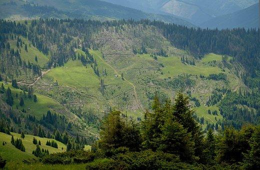 Mountains, The Carpathians, Landscape, Nature, Journey