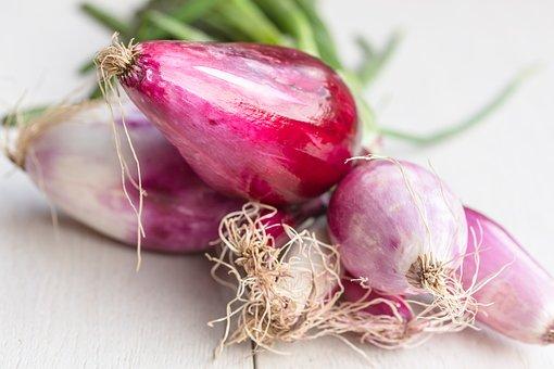 Onion, Tropea, Raw, Fresh, Food, Ingredient, Red