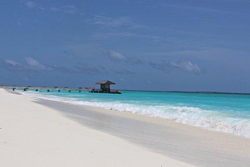 Web, Sea, Beach, Water, Turquoise, Maldives, Holiday