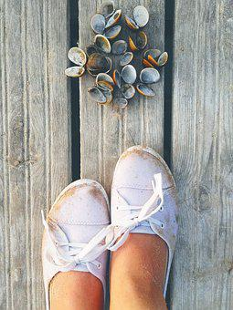 Shells, Bridge, Shoes, Travel, Holidays, Sneakers