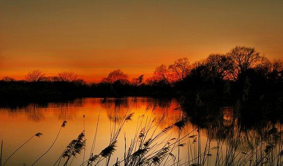 Lake, Sun, Evening, Sunset, Nature, Water