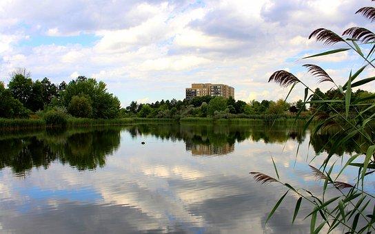 Lake, Tree, Water, Nature, Sky, Houses