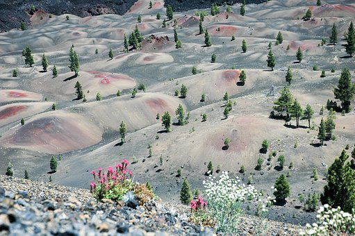 Painted Dunes, Lassen National Park, Lava Rock