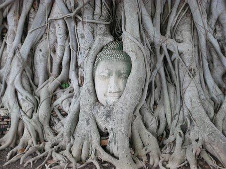 Thailand, Buddha, Measure, Buddha Statue, Temple