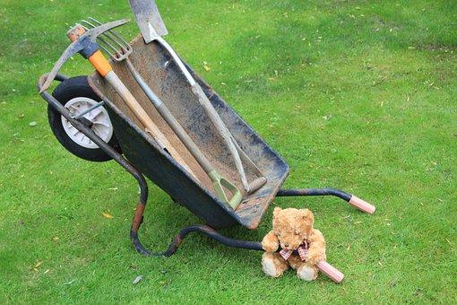 Teddy, Bear, Wheelbarrow, Holding Down, Strong, Cute